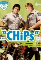Chips 2016
